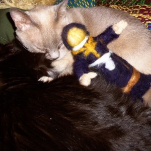 The parson sleeping with the kitties