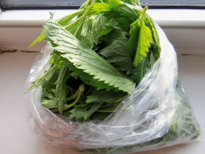 This is a bag of stinging nettles