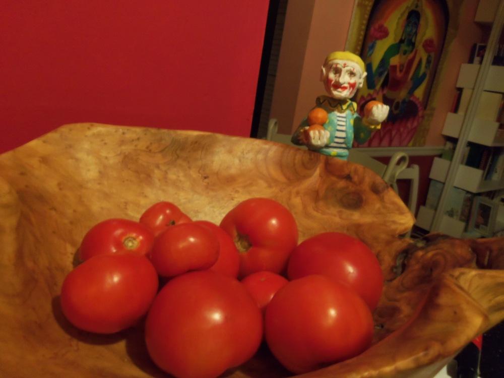 Beautiful farm tomatoes