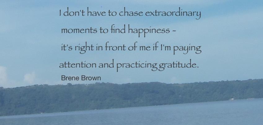 Gratitude--Brene Brown