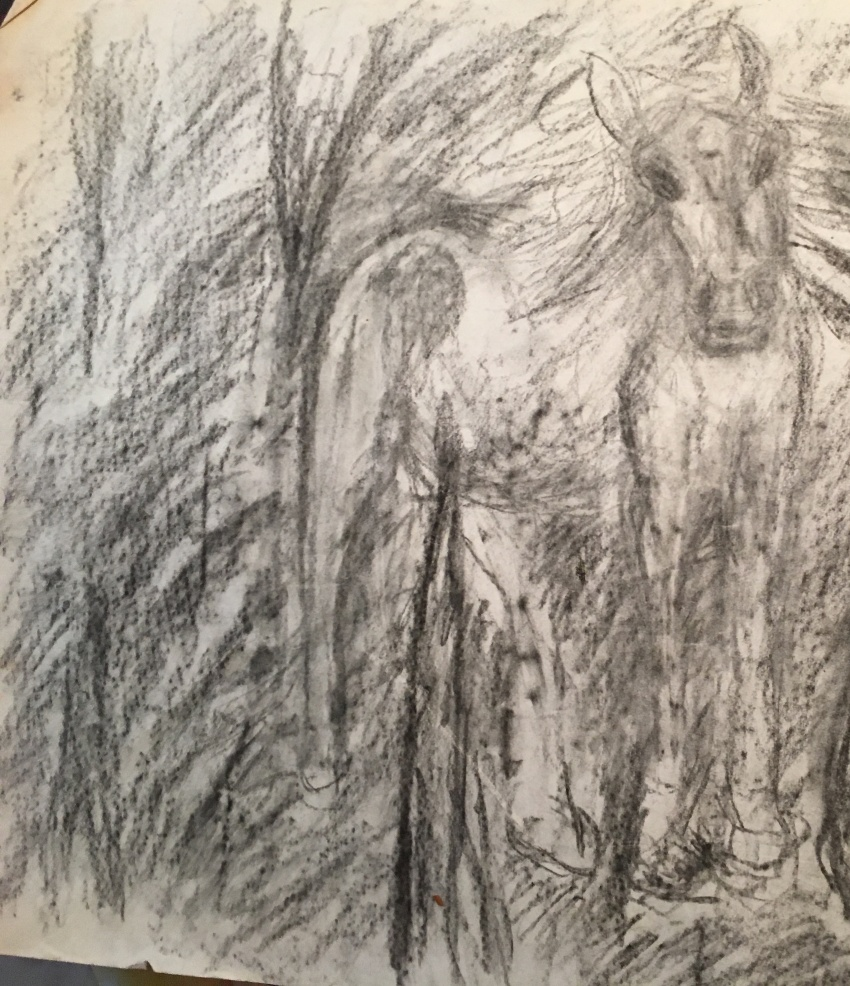 samuel-the-horse