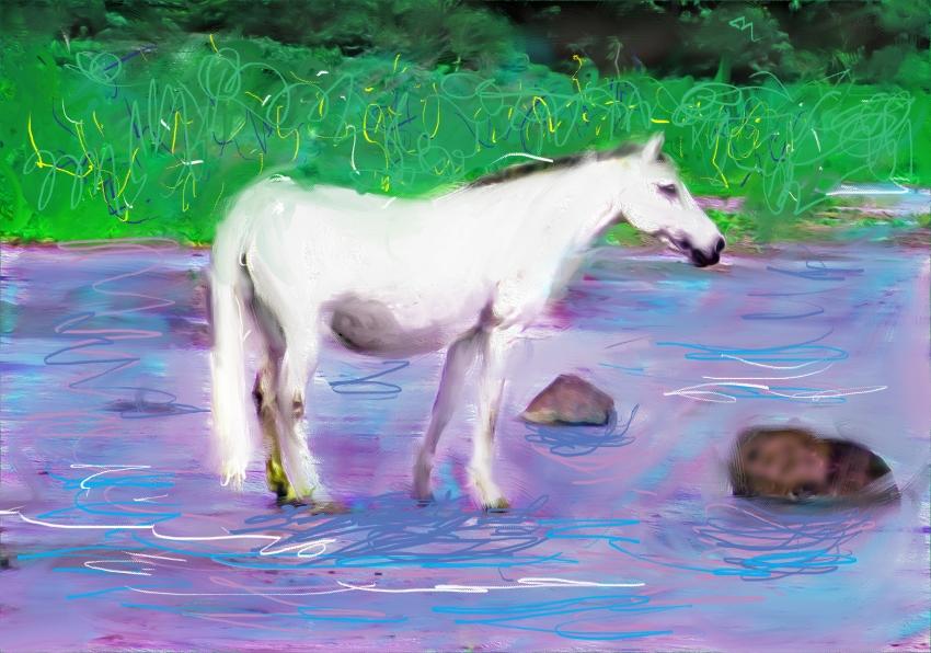 samuel-the-magical-horse
