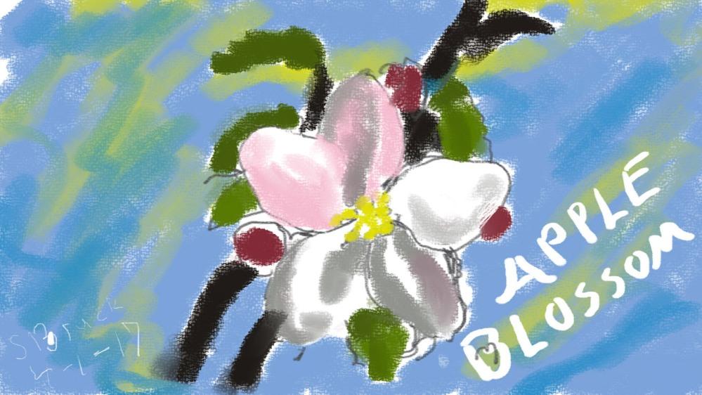 apple blossom copy.jpg